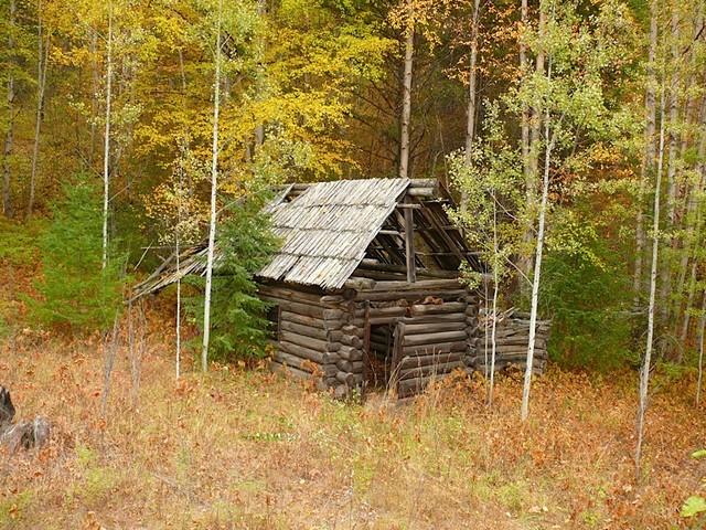 Baumhaus / Treehouse